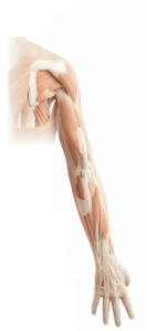 Shoulder and arm pain treatment